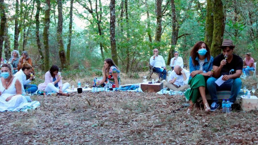 El bosque de Berán-Leiro, escenario de una cata de orujo musicalizada · El Correo Gallego